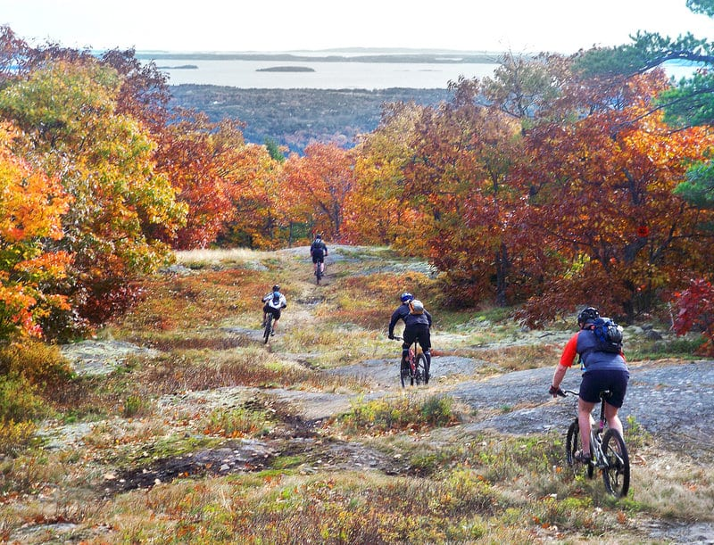 Big Island Mountain Bike Tours